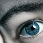 【ことわざ人相学】眉の意味を学ぶ