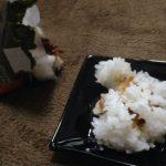 【ダイエット皿】食事のありがたみを小皿で感じる