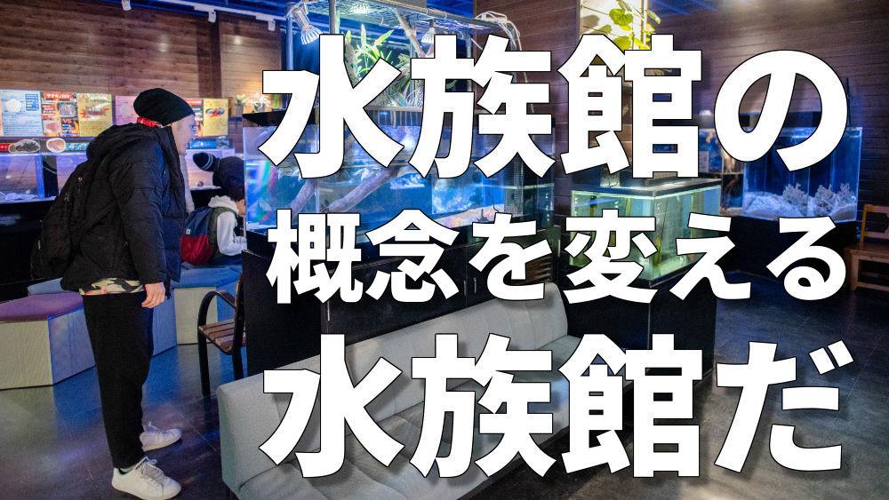 竹島水族館水槽